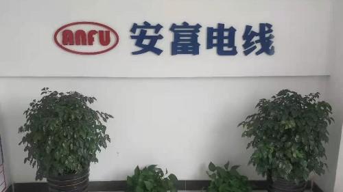 广东线束公司