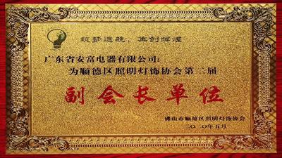 安富副会长单位荣誉